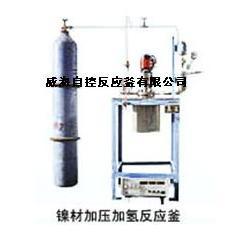 高溫實驗室反應釜-高壓反應釜-實驗室反應釜圖片