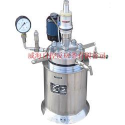 湿法冶金反应釜-高压反应釜-冶金反应釜图片