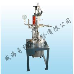 氢化反应釜-氢化反应釜+30mpa-实验室反应釜(优质商家)图片