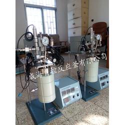 加氢试验反应釜_自控反应釜_试验反应釜图片