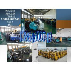 100KW柴油发电机组技术资料图片