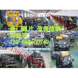 潍柴华丰柴油机R4105ZD油泵喷油嘴图片