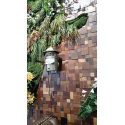 福州壁挂式灭蚊灯-壁挂式灭蚊灯报价-高科达品牌运营中心图片