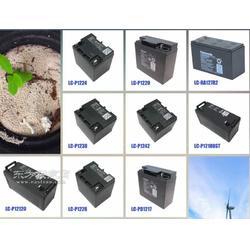 松下蓄电池UP-VW1228 12V28AH太阳能用蓄电池图片