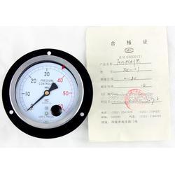 压力控制器YTK-1011.6级图片