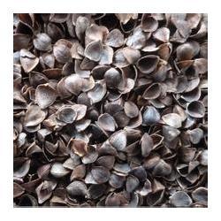 荞麦壳、龙达家纺辅料(在线咨询)、和田荞麦壳图片