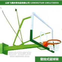落地式篮球架 成人篮球架 移动式篮球架移动篮板移动篮架图片