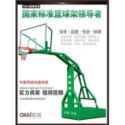 标准篮球架,欧凯体育(在线咨询),常平篮球架图片