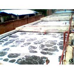一体化染整污水处理设备图片
