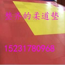 柔道垫 柔道垫子2*1米柔道海绵垫 健身房用柔道垫图片