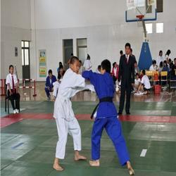 训练专用柔道垫,柔道垫,华翔体育器材厂(查看)图片