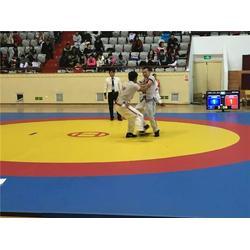 山西摔跤垫、摔跤垫用途、海兴县华翔体育器材厂(优质商家)图片
