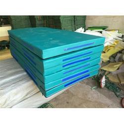 精品摔跤垫,海兴县华翔体育器材厂(在线咨询),新疆摔跤垫图片