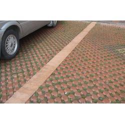 草坪砖、文兰优堂水泥制品、草坪砖材质图片