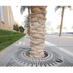 污水厂护树板护树板型号护树板多少钱一套图片
