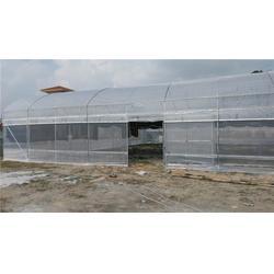 温室大棚骨架厂家-温室大棚骨架-芳诚温室图片