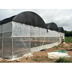 温室大棚建设视频 专业温室厂家 温室大棚建设