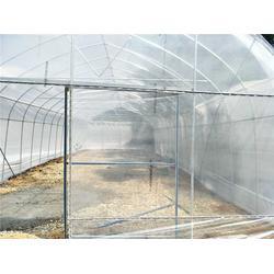 花卉蔬菜大棚-蔬菜大棚-芳诚温室图片