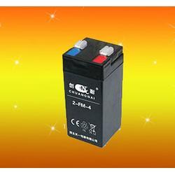 创耐电池、电子秤电池多少钱、电子秤电池图片