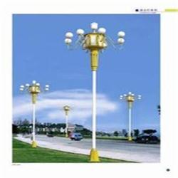 光伏电站工程,亚明(在线咨询),光伏电站图片