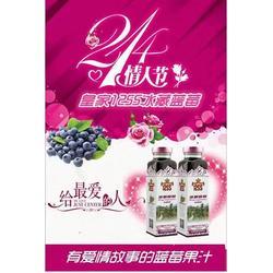 冰藏蓝莓广东总代理、冰藏蓝莓、德饮德国啤酒图片