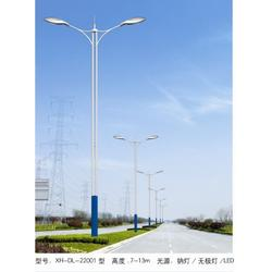 道路照明-中坤照明-dialux道路照明图片