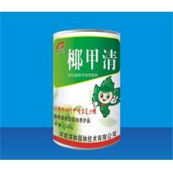 广州绿顺园林(图),防除椰心叶甲,椰心叶甲图片