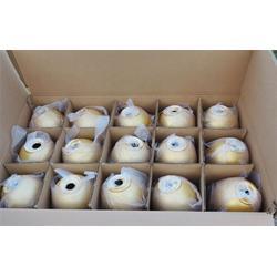 金蛋直销,金蛋,北京泰和(优质商家)图片