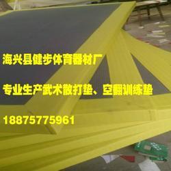 武校专用柔道垫-柔道垫-健步体育生产厂家(查看)图片