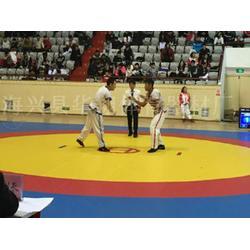 摔跤垫-健步体育器材厂家直销-摔跤垫供应商图片