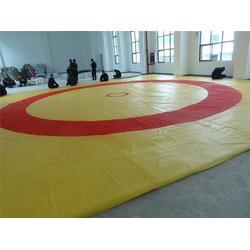 安徽摔跤垫,比赛用摔跤垫,健步体育(推荐商家)图片