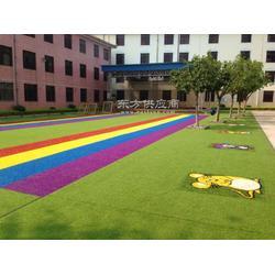 彩虹幼儿园草皮图片