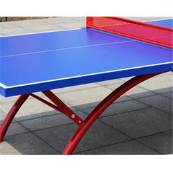 番禺乒乓球桌,蓝点体育器材(商家),家用乒乓球桌图片