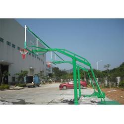 揭阳篮球架|新塘篮球架|蓝点体育器材(优质商家)图片