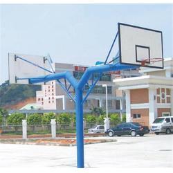 萝岗篮球架厂家,蓝点体育器材,惠州篮球架图片