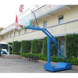室内篮球架系列|蓝点体育器材(在线咨询)|萝岗篮球架系列图片