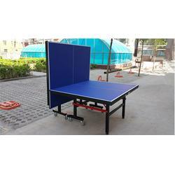 小型乒乓球桌_蓝点体育器材_中山乒乓球桌图片