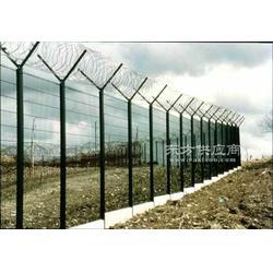 刀刺滚笼网,加高防护网,刀刺刺绳防护网图片