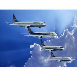 广州国际空运,高运效率,广州国际空运物流公司图片