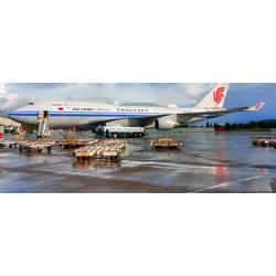 广州国际货代公司|广州国际货代|高运国际货运(查看)图片