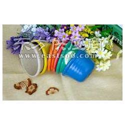 绿缘锦迷你花盆多肉盆塑料花盆,陶瓷花盆,塑料盆图片