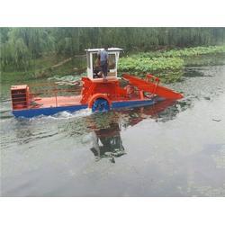 青州远华环保科技 大型割草船-内蒙古割草船图片