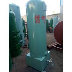 滨州热水锅炉、蓝山锅炉、燃液化气热水锅炉图片