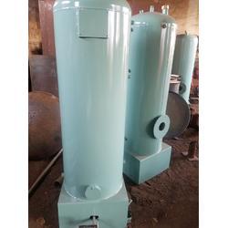 小型火排燃气锅炉|铜川燃气锅炉|蓝山锅炉图片