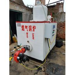 浏阳燃气锅炉、蓝山锅炉(在线咨询)、1吨燃气锅炉图片
