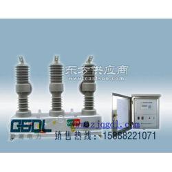 廠家直銷ZW32-12高壓斷路器ZW32-12戶外柱上開關廠家現貨圖片