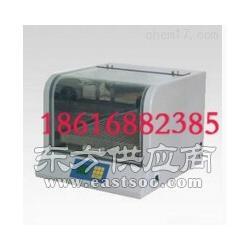 THZ-100恒温培养摇床图片