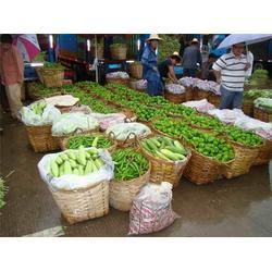 西安蔬菜配送企业电话-袋鼠农产品销售-西安蔬菜配送图片