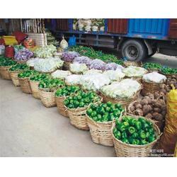 西安学校蔬菜配送|袋鼠农产品销售(已认证)|蔬菜配送图片