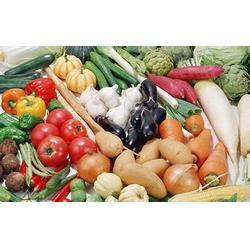 西安蔬菜配送公司(图),西安学校食堂承包,食堂承包图片